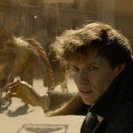 """FANTASTIČAN trejler """"Fantastičnih zveri""""! (VIDEO)"""