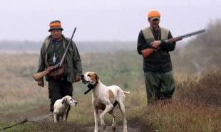Neregistrovane lovačke puške ne važe od marta 2019. godina