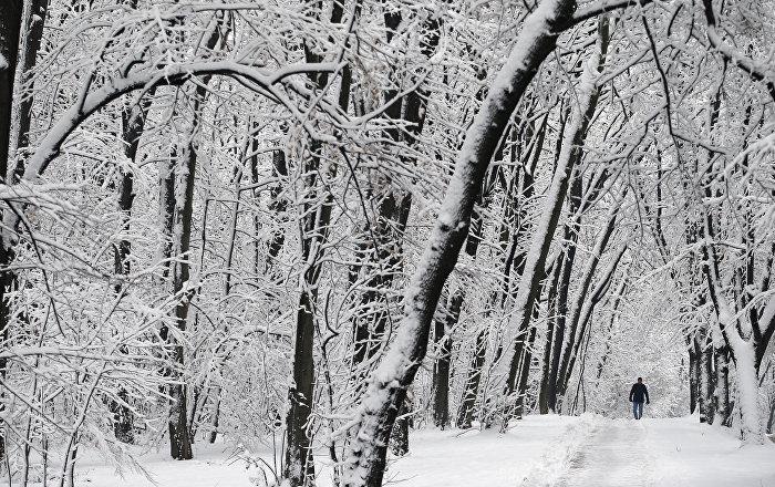 Crveni meteo-alarm u Srbiji, pašće novih 40 centimetara snega