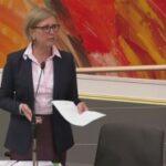 """NAJAVLjENO """"ČEŠLjANjE"""" PARTIJA: Kako se stranke u Austriji finansiraju?"""