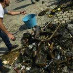 Hiljade ljudi čisti obale Španije