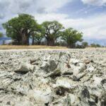 Bocvana - nekada jezero, ovaj predeo je danas isušen
