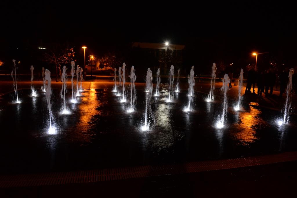 fontana Univerzitet