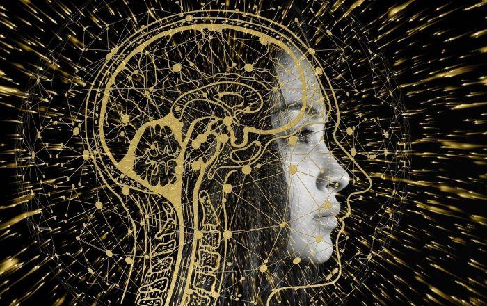 Od skrivene svesti do oživljavanja mozga: Deset stvari o mozgu koje smo otkrili u 2019.