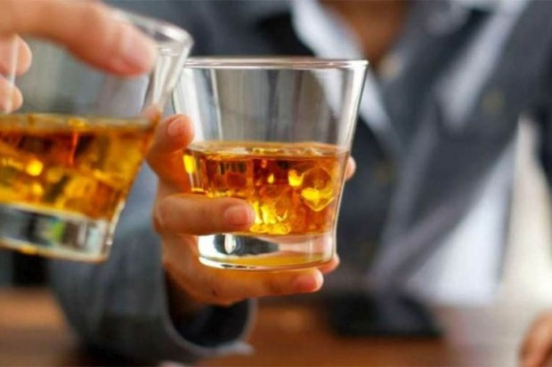Litar žestokih pića poskupljuje za oko euro