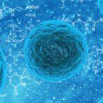Opasnost iz mikrosvemira: Koji virusi prete desetkovanju čovečanstva